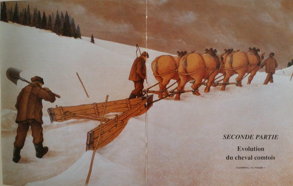 100-1996 illustration de livre