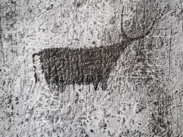 Le taureau rouge