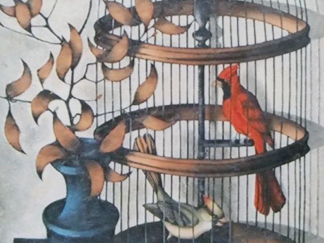 Cage, oiseau rouge, vase bleu