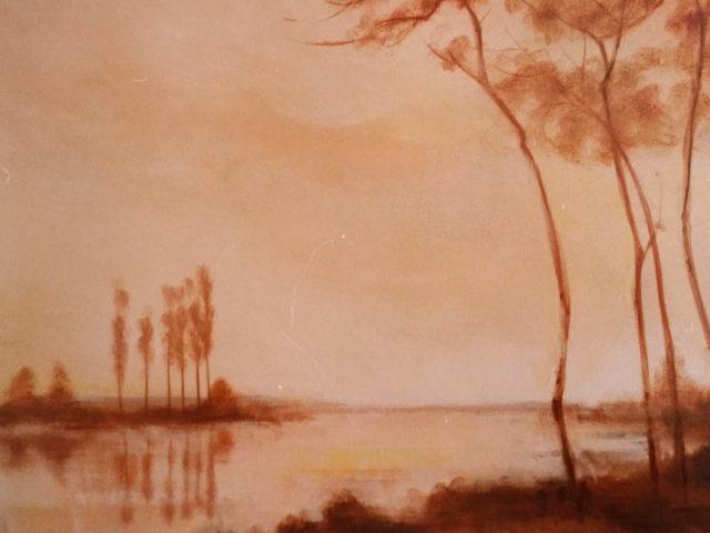 Les arbres du bord de l'eau