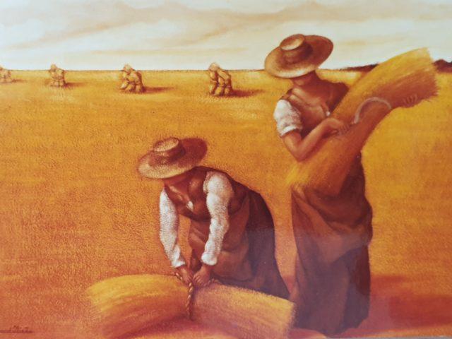 Moissons – Les lieuses de gerbes