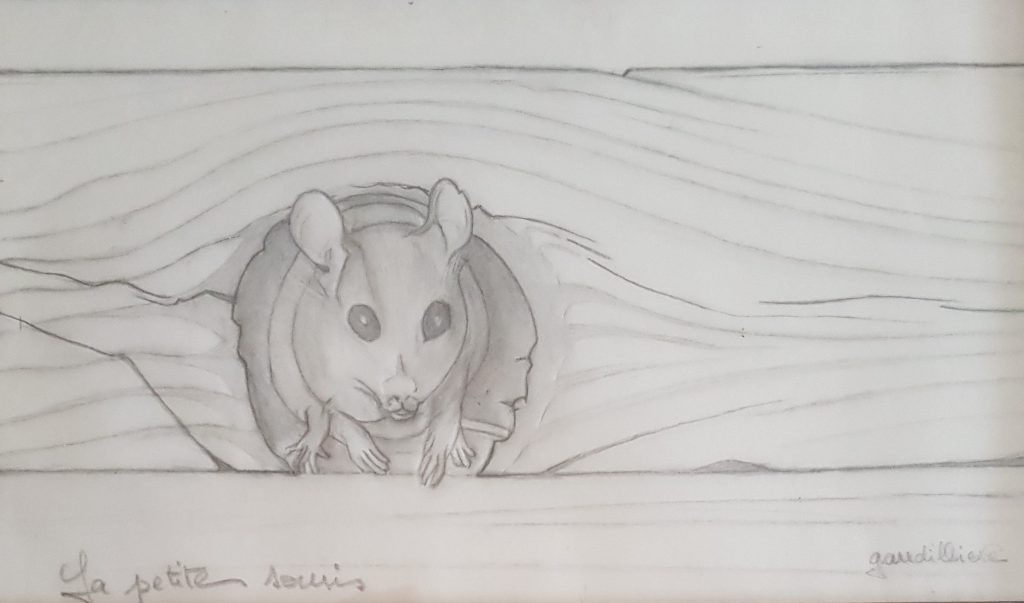 1994 la petite souris 0,15-0,24 étude dessin calque