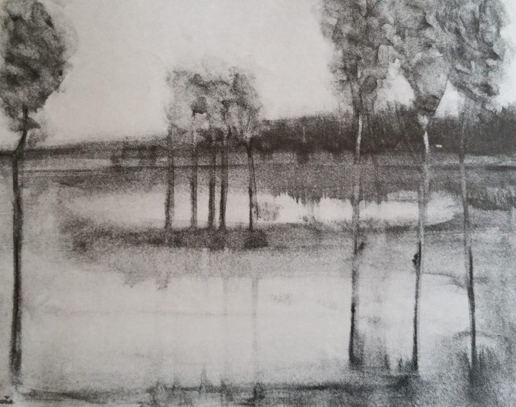 1974-18 reflets-sur le voile de l'eau ,photo réduite