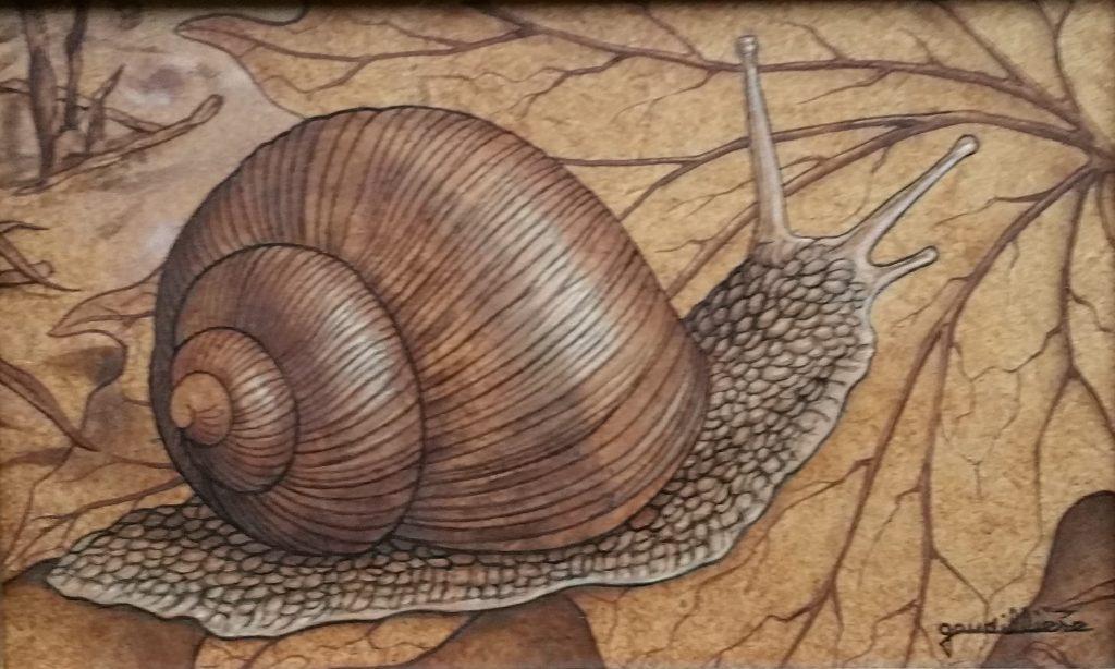 1986 l'escargot 1P 0,14-0,22 isorel