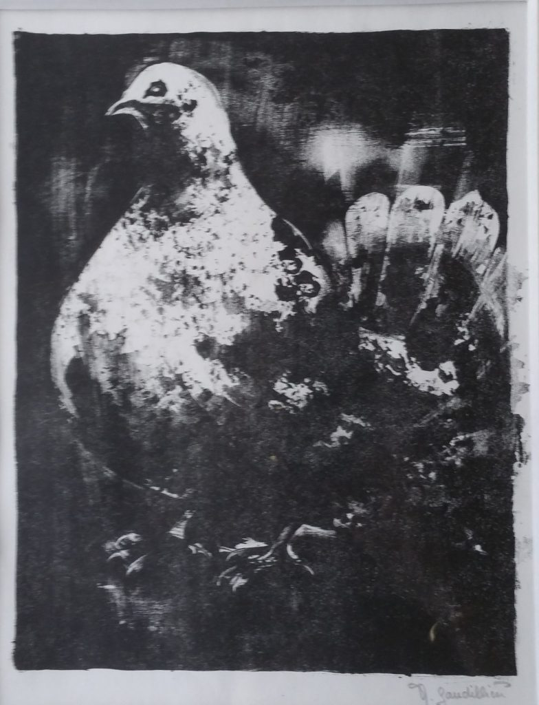 1963 le pigeon 0,30-0,22 lithographie