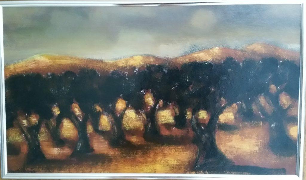 1973 les oliviers 6M