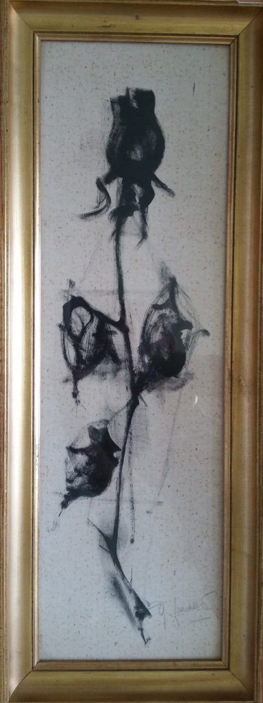 1960 rose noire