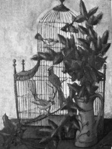 1961 la cage 20F 0,73-0,60 bernard Faille Site Mémoire Vive (2)