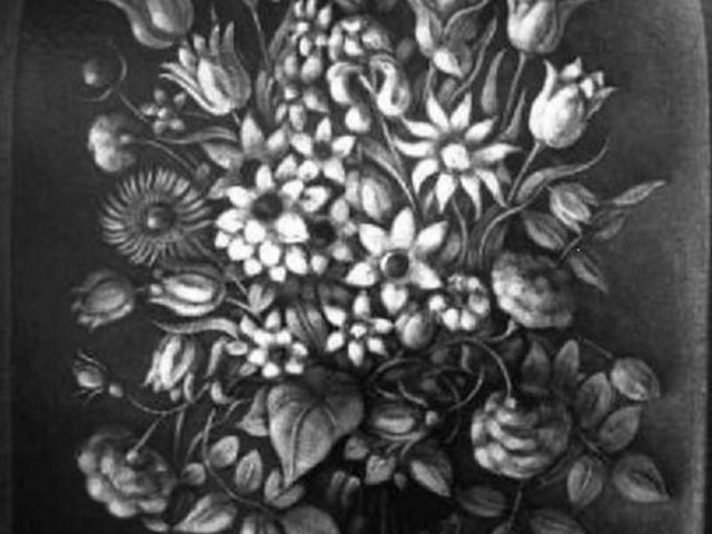 Les fleurs de l'aurore